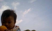 アヤコレのブログ
